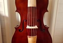 Violone en Ré / D violone